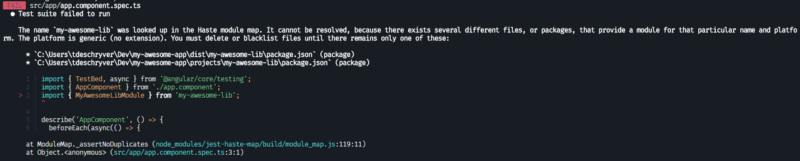 the application tests are failing because there exists several different files, or packages with the name my-awesome-lib